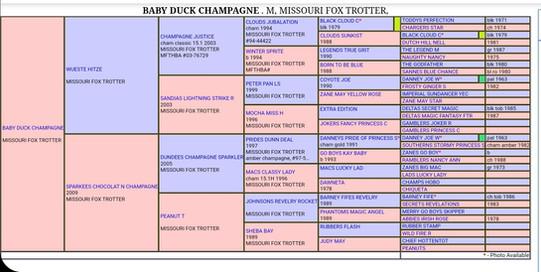 Baby Duck's Pedigree