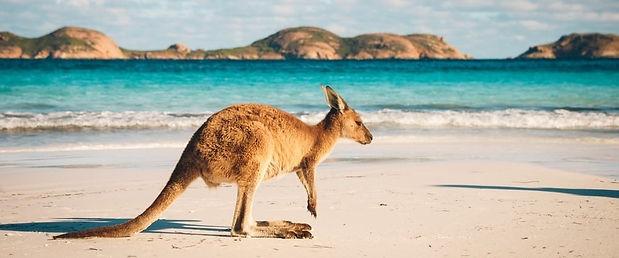 seguro-medico-working-holiday-australia-