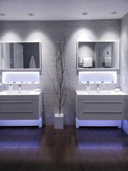 Fully re-designed Master bathroom
