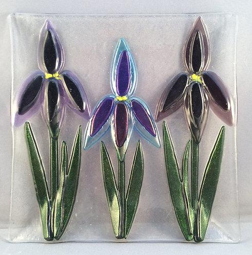 Fused Glass Square Iris Dish