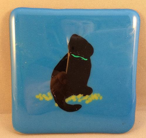 Fused Glass Black Cat Coaster