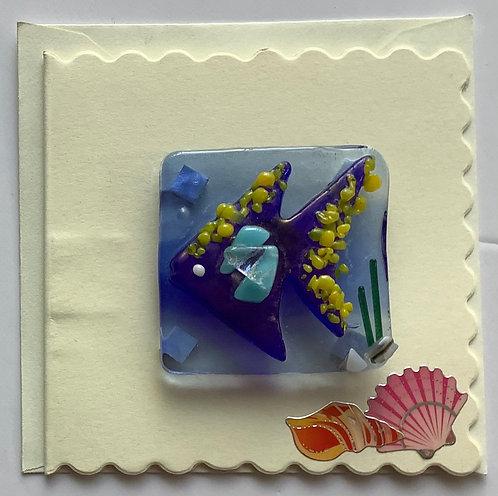 Glass Angelfish Magnet Card