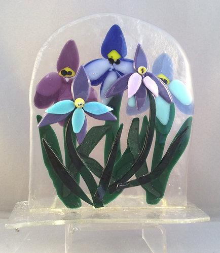 Freestanding Iris