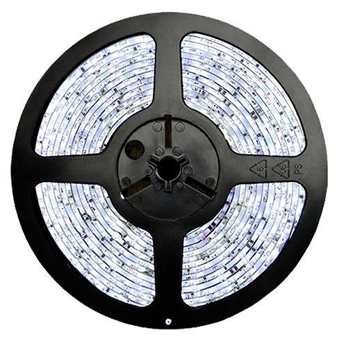 FITA LED 5050 IP20 12V/60W - Rolo 5m (300 leds) Branco Frio 6000K
