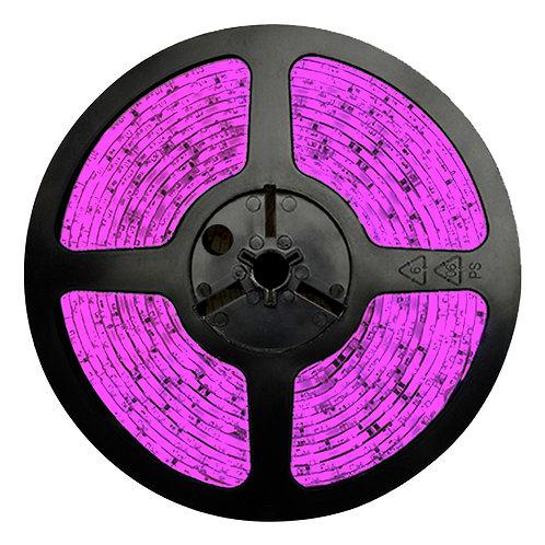 FITA LED 3528 IP65 12V - Rolo 5m (300 leds) - ROSA