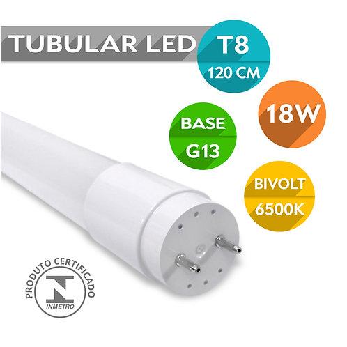 Lâmpada Led Tubular T8 G13 18W 120cm | Vidro | Bivolt | Branco Frio
