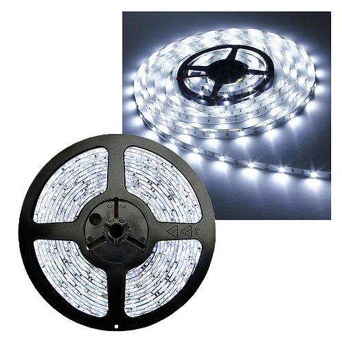 FITA LED 3528 IP20 12V/36W - Rolo 5m (300 leds) - Branco Frio