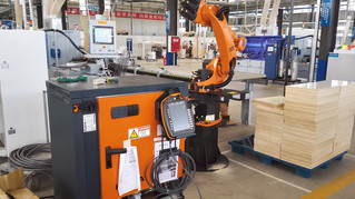 Mechanical Engineering in Industrial Robot in China