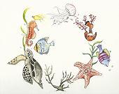 sea creatures.jpeg