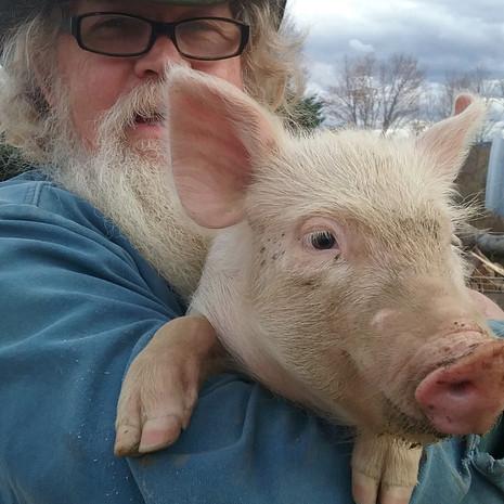 Stuart & Pig
