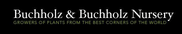buchholz-nursery.jpg