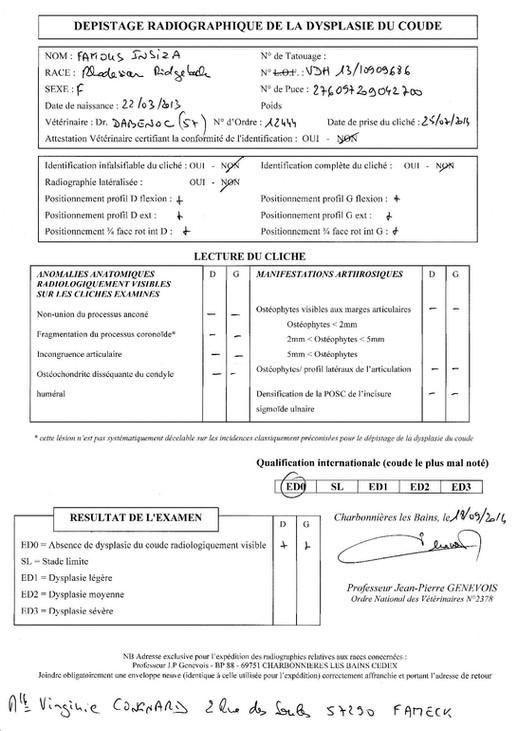 IMG_20180921_0015-page-001.jpg