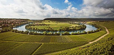 Neckarschleife bei Mundelsheim, Württemberg