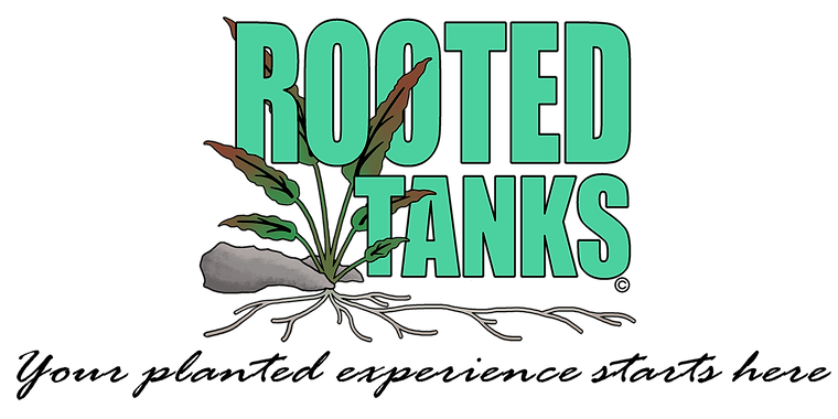 banner logo rooted tanks.png