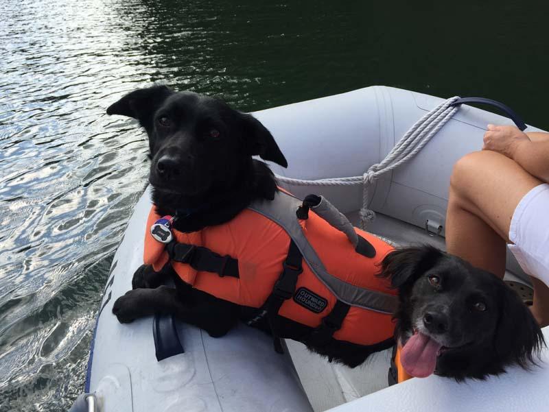 Chase & Brandy