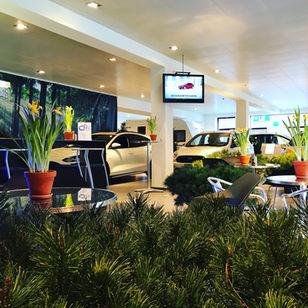 Ford Showroom 1.jpg