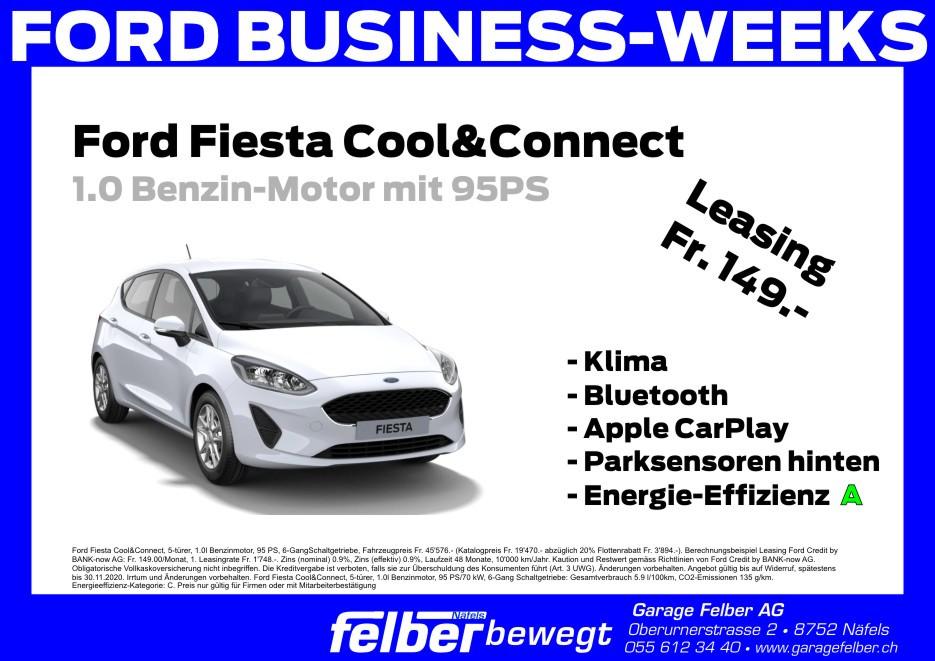 Ford Fiesta.jpg