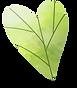 Leaf_Heart.png
