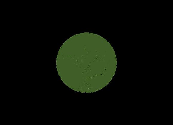 Olivas Verdes Deshuesadas al Limon Bio 300g. Joel Bio Food