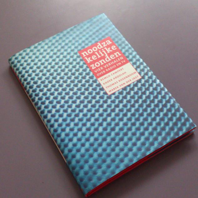 Boek Noodzakelijke Zonden ned litteratuur