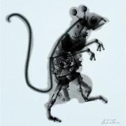 robot-muis