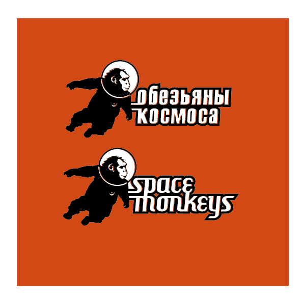 preposal Space Monkeys 2010