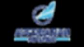 Azerbaijan Airlines.png