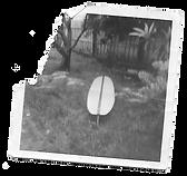 Baroku-Our-Story-Polaroid.png