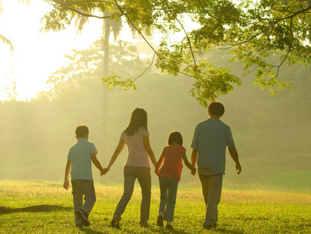 Making Sense of Family Law Disputes