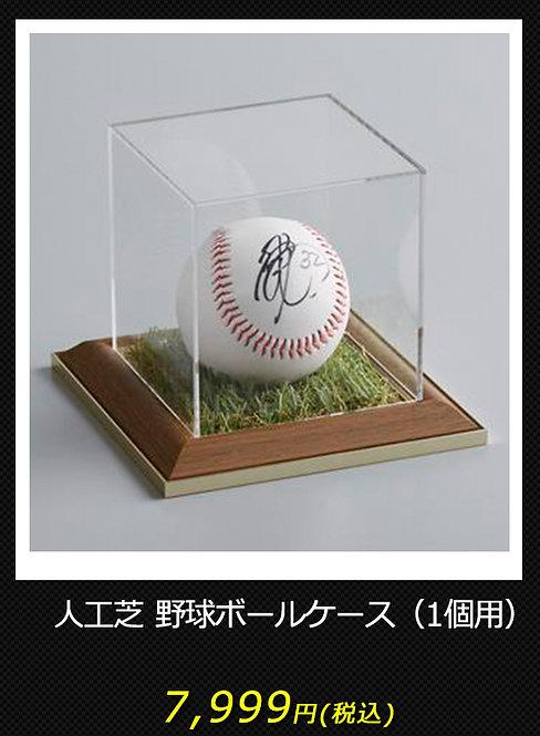 人工芝 野球ボールケース(1個用)