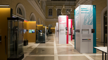 Past Under the Microscope Exhibition Is Ending