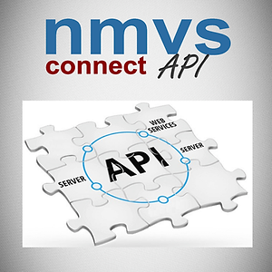 nmvs_connect_api.png