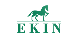 logo-alternatif-ekin.png