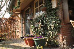 Ingang Bed and Breakfast - Theetuin Green Cottage