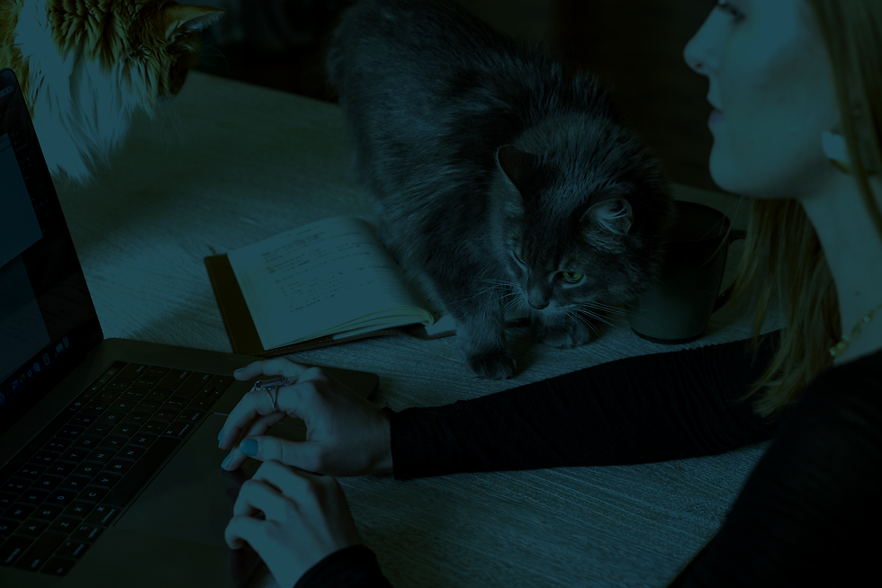 Graphic Designer working with Cat