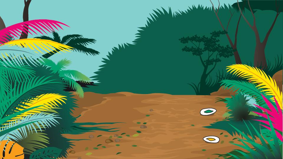 Tropical Branding Background