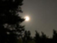スクリーンショット 2020-06-08 21.49.19.png