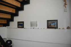 Shells & Prints