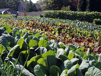 Berkshire Garden Style - Organic in Practice
