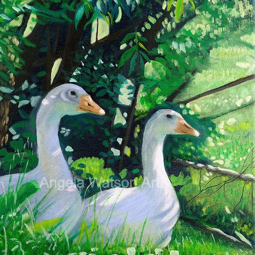 Godney Geese