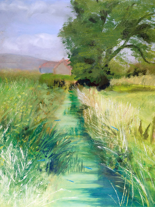 Damselflies Dancing, Sharpham, Somerset 20x16 inches