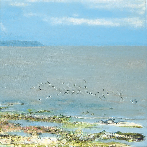 Flock of Birds, Kilve