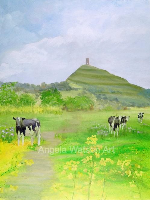 Cows Beneath the Tor 10x8