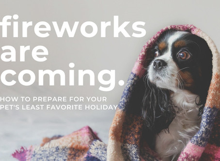 Surviving the Fireworks Frenzy