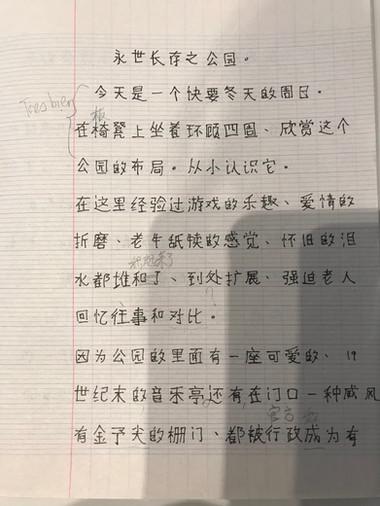 Petit roman en chinois