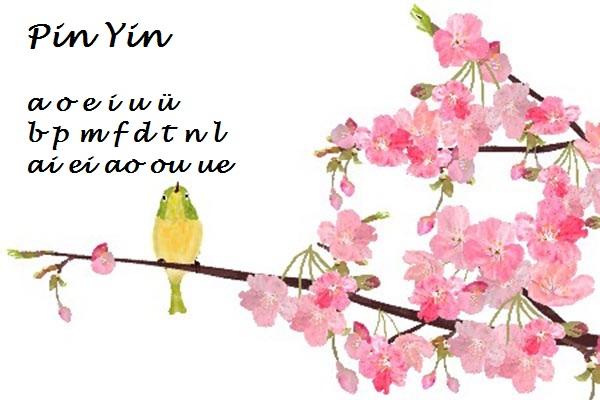 Pin Yin