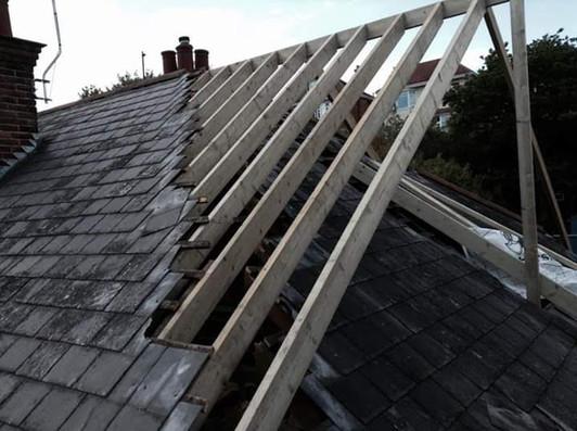 cut roof .jpg