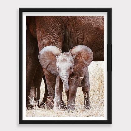 Elefante Bebé y Mamá Art Print