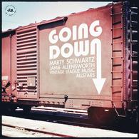 Marty Schwartz, Jamie Allensworth and the VLM Allstars - Going Down.webp