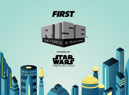 FIRST RISE 2020